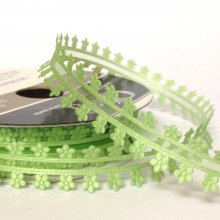 19mm Minuet organza Ribbon Green